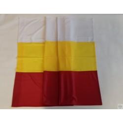 Flaga Białegostoku na drzewiec 150x90